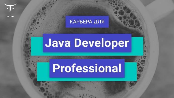 OTUS: Вебинар Карьера для «Java Developer Professional» - видео
