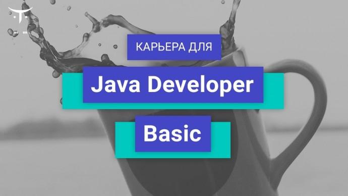 OTUS: Вебинар Карьера для «Java Developer. Basic» - видео -